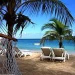 Пальмы море отдых
