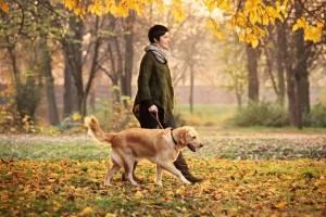 Девушка гуляет с собакой